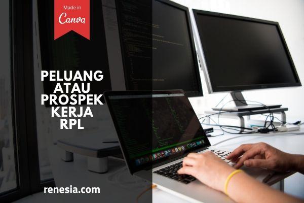 Peluang Atau Prospek Kerja RPL